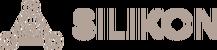 www.silikon.lt